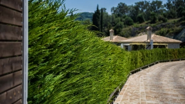 villas-in-arillas-corfu-details-outside-3